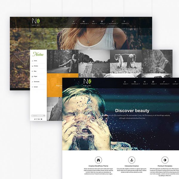 Nailme – Full PJAX Multiple Layout WordPress Theme